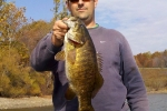 woodcock_smallie