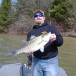 Hybrid Striper