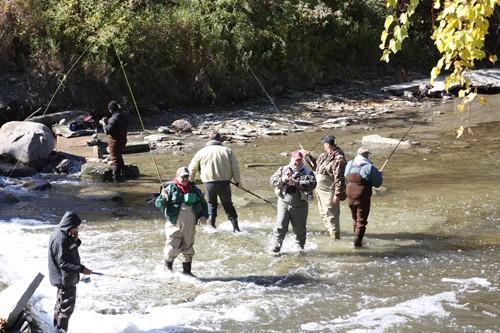 Northwest pennsylvania fishing report 9 26 11 fish for Erie pa steelhead fishing report