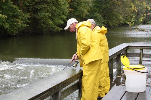 Northwest pennsylvania fishing report 10 3 11 fish for Pa fishing report