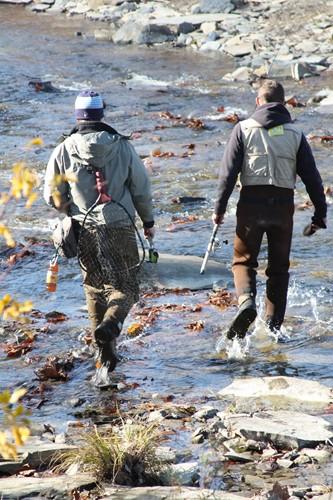 Northwest pennsylvania fishing report 11 21 11 fish for Erie fishing report poor richard s